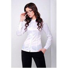 блуза Норма2 д/р NCG10576