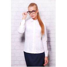 блуза Норма д/р NCG9630