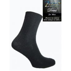 Демисезонные мужские носки «Demi» Елочка