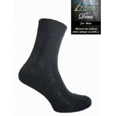 Демисезонные мужские носки «Demi» Строка
